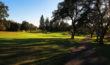 Golf is Beautiful