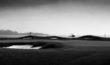 Pebble Beach - May2019 - 4000x-14